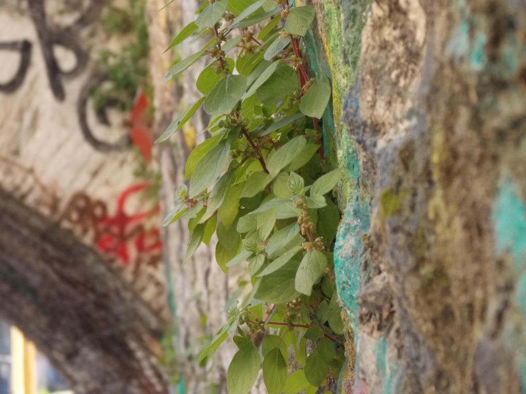 green life by MrDoomy