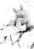 Totoro by XiaFei