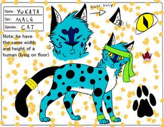 Yukata (cat form) Reference Sheet :3