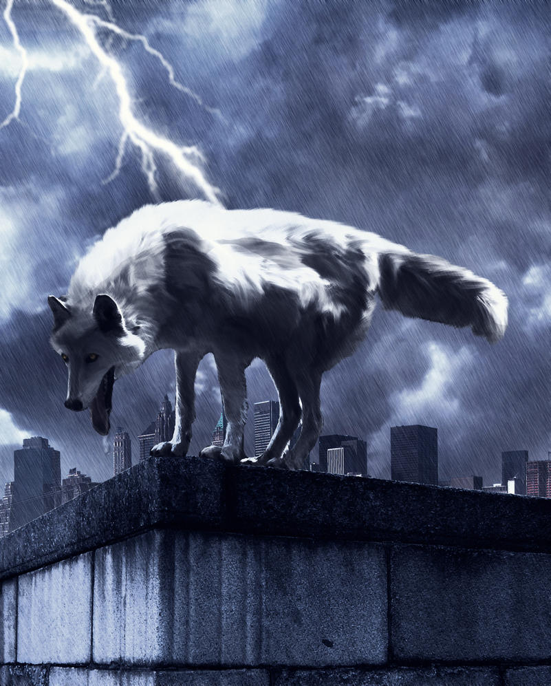 wolves and lightning wallpapers - photo #24