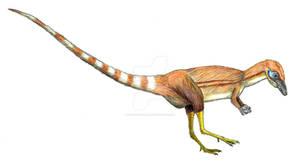 Paleo-Colours: Sinosauropteryx