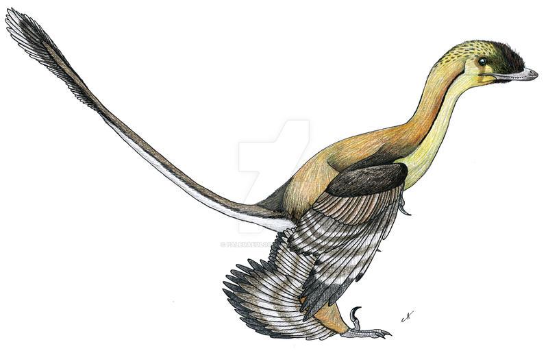 Paleo-Colours: Sinornithosaurus by PaleoAeolos