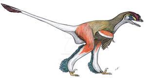 Tianyuraptor
