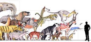 Fossil Mammal Parade