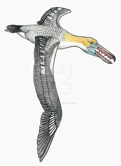 Pelagornis chilensis by PaleoAeolos