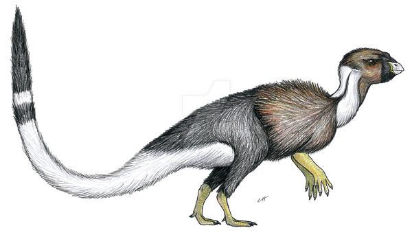 Trinisaura santamartaensis