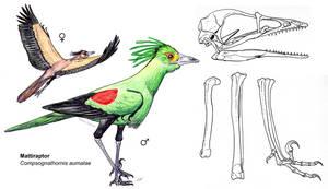 Flying Mattiraptor by PaleoAeolos