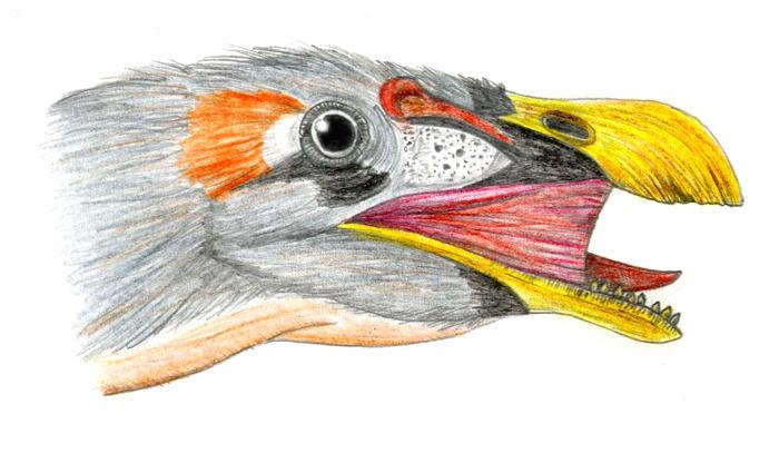 Erlikosaurus andrewsi by PaleoAeolos