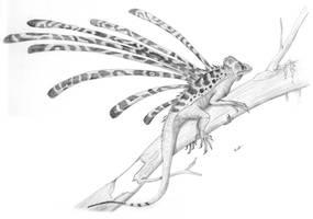 Longisquama insignis by PaleoAeolos