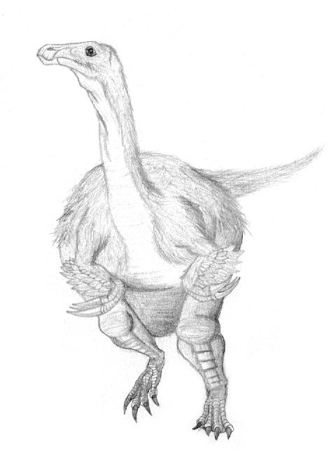 Segnosaurus galbinensis