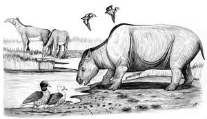 The Late Pliocene