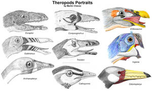 Theropods Portraits
