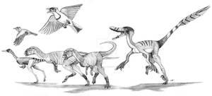 The Late Cretaceous of Neuquen