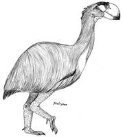 Gastornis by PaleoAeolos