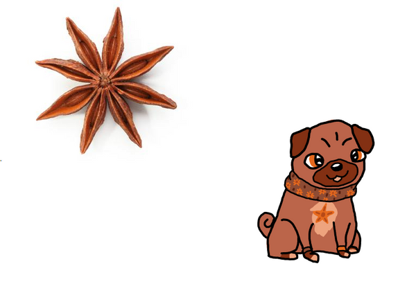 Star Anise Spice Pug *OTA OPEN* by BlueBudgie25
