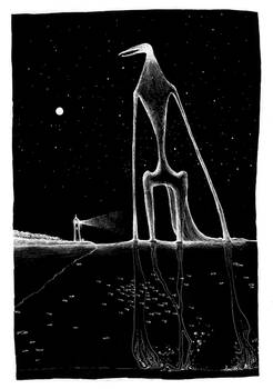 Night of the sea