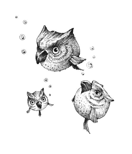 Owl-puffer by spowys