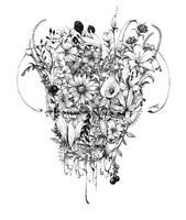 Spring sound by spowys
