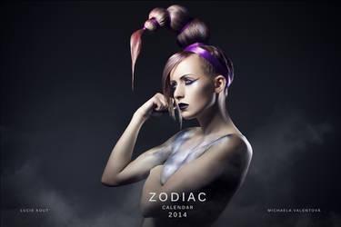 Zodiac hair fashion calendar by luciekout