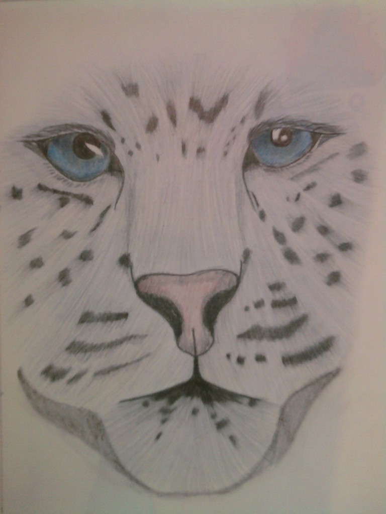 To Face a Leopard_colored by black-ice-wolf