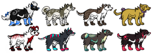Doggy Adopts Auction 1