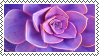 Purple Succulent Stamp by Galactic-Fire