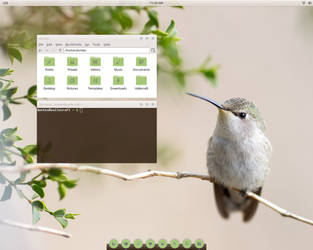 Gentoo green by Dontes