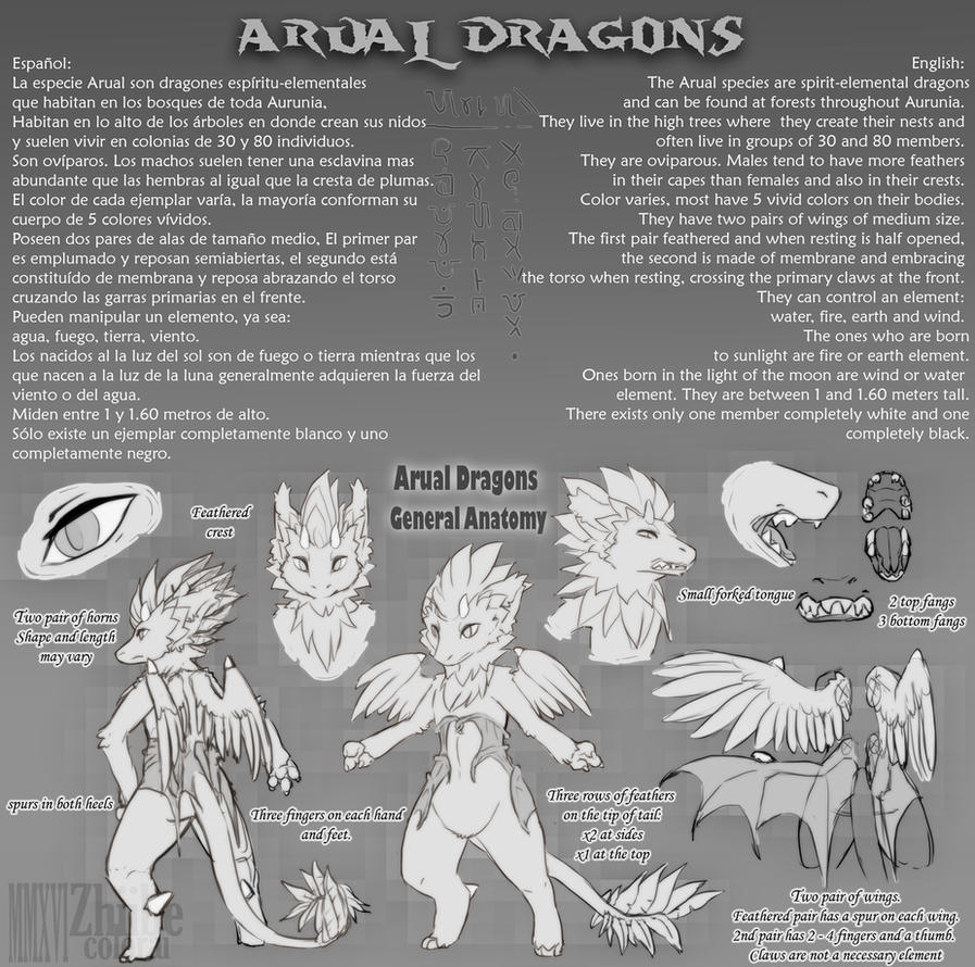 Arual Dragons by Zhiibe
