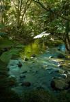 January Nature Scene 001 by otas32