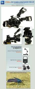 TUTORIAL Cheap Macro Twin Lite by otas32