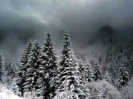 Winter by MaraDamian