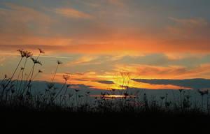 sunset4 by MaraDamian
