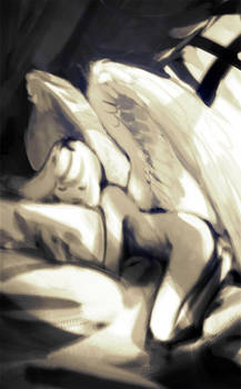 Angel's nap