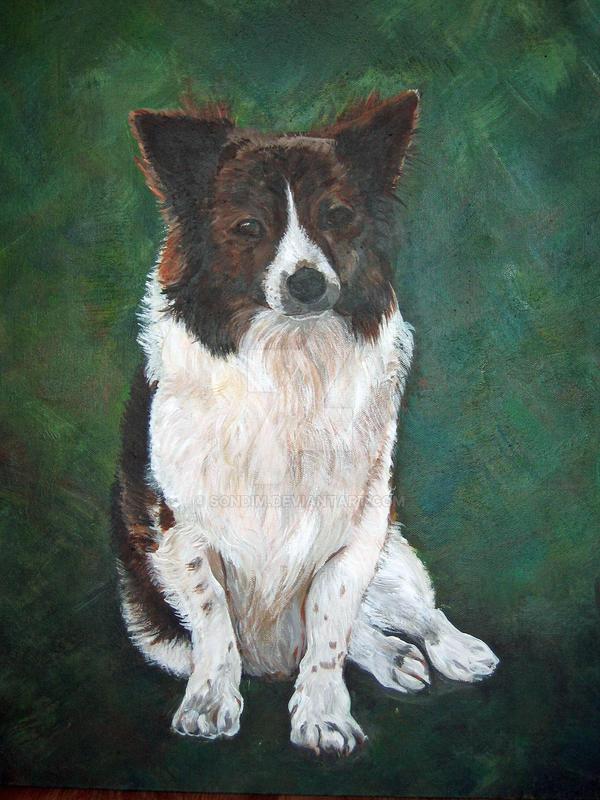 Dog by Sondim