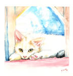 Framed Kitty watercolours