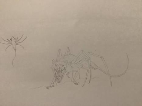 Rapider (rat spider hybrid)