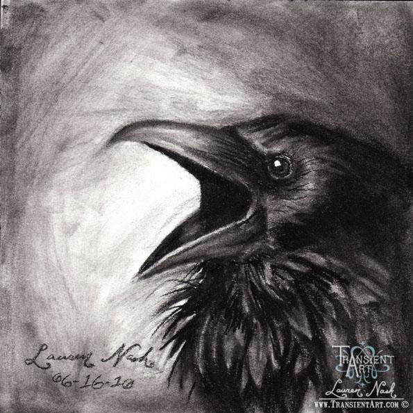 Raven 3 by TransientArt