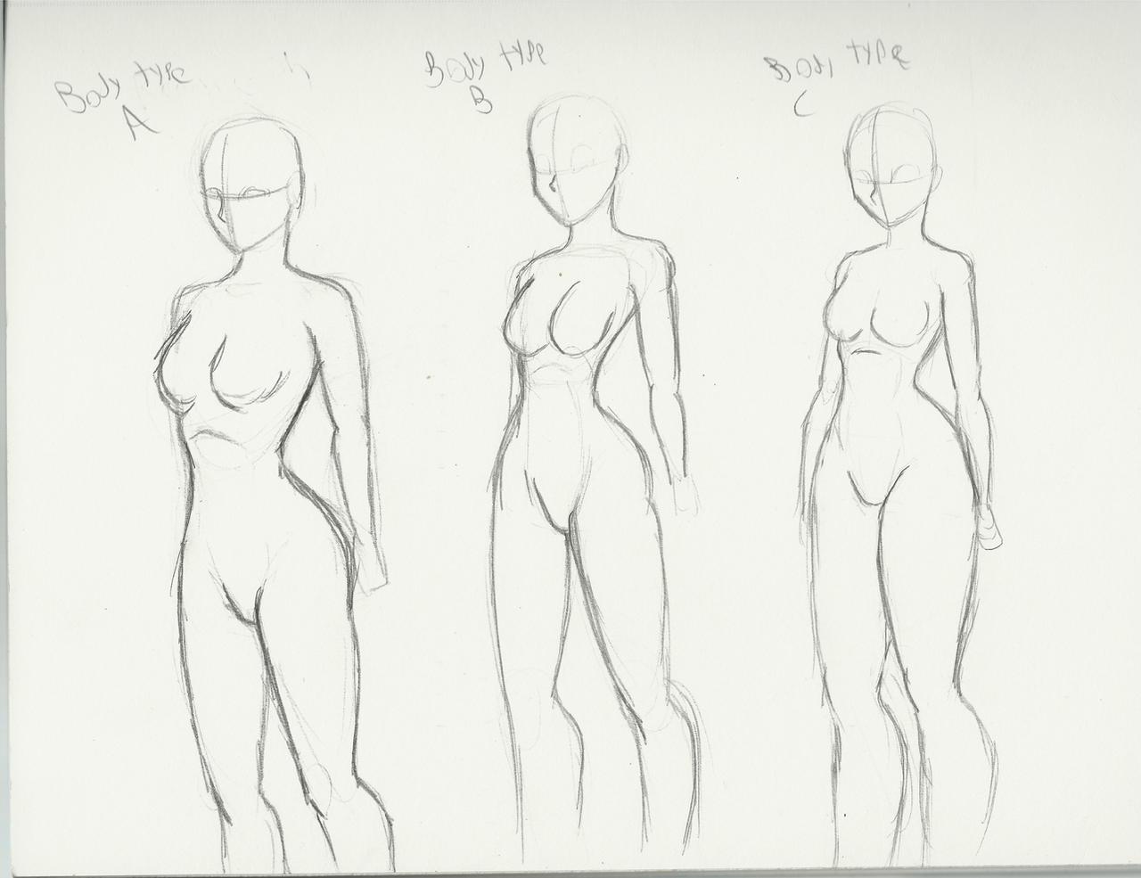 Body Types By DCLzexon