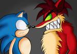 Sonic Vs Evil Crash