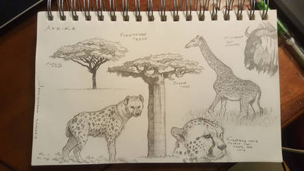 Africa sketches by Maximum993