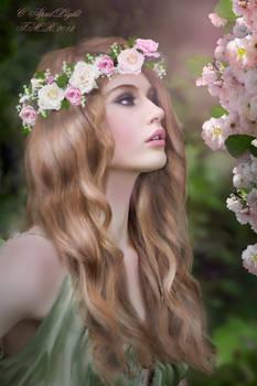 Perfume of Spring
