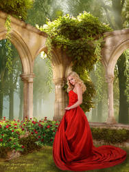 Perfume of Red