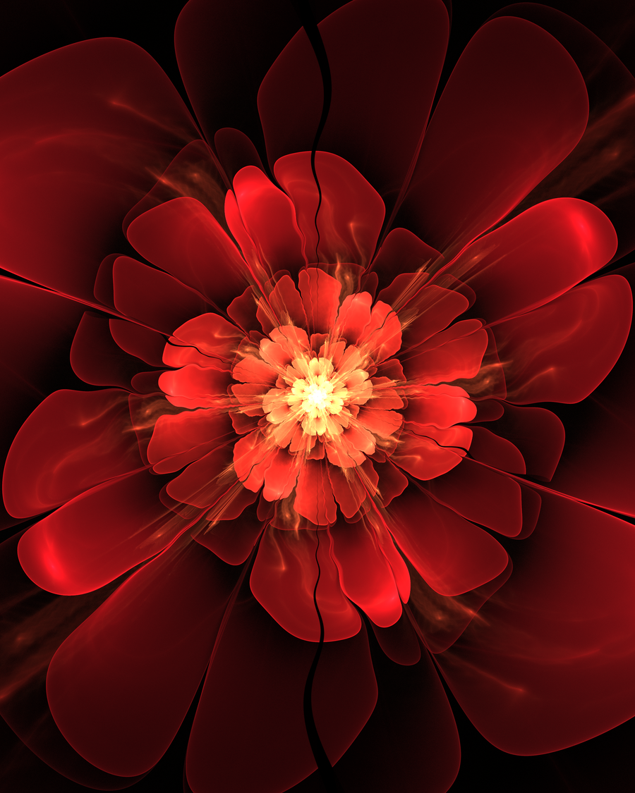 Red Bloom by caffe1neadd1ct