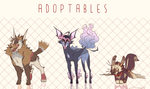 CLOSED ADOPTS (auction)
