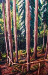 Deep in woods 2