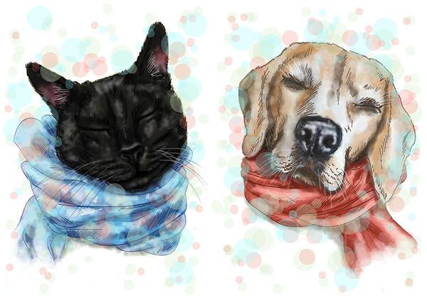 Cat and Dog by Meljona