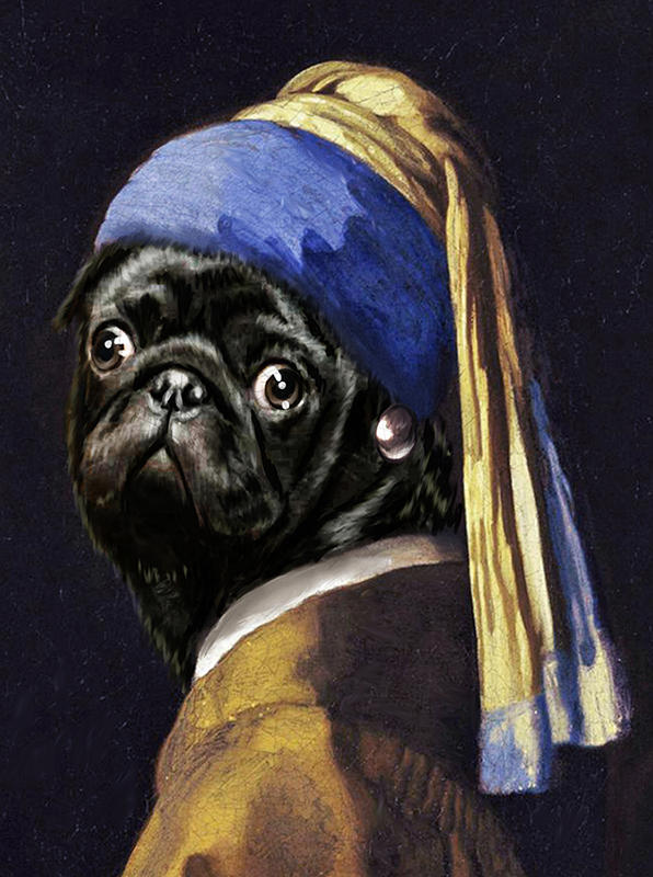 Pug with a Pearl Earring