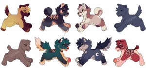 pupy adopts : open (lowered price)