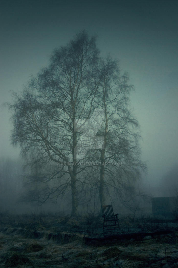 Tree in the fog by kKimago