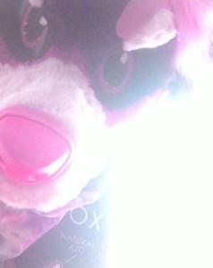Carillon-Nightmares's Profile Picture